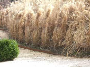 Garten Im Winter ? Was Tun, Was Lassen? | Garten.ch Gartnern Im Herbst Den Garten Fur Die Wintertagen Vorbereiten