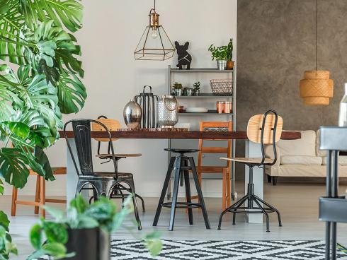 Bild Shutterstock Photographee.eu: Grünpflanzen zum Wohnen – moderner als manche denken…