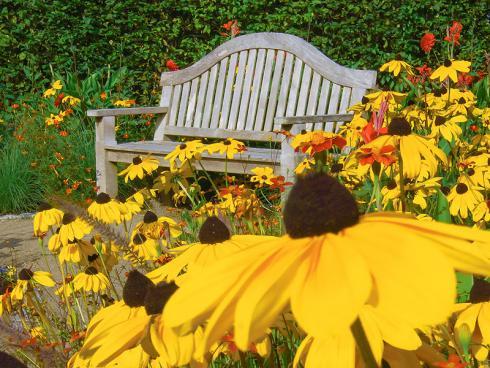 Bild Picturegarden Rohner: Ein Traum in Gelb: wer möchte da nicht auf der Bank seine Seele baumeln lassen?