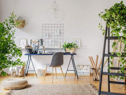 Bild Shutterstock Photographee.eu: Zimmerpflanzen sind gut fürs Raumklima und auch deshalb eine prima Idee für das Arbeitszimmer…