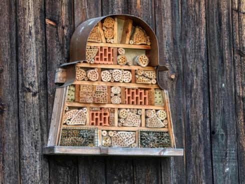 Bild @ planet_fox (CCO-Lizenz) / pixabay.com: Auf dem Markt gibt es ein grosses Angebot fertiger Bienenhotels. Ein grosser Spass ist es, ein solches selber herzustellen und zu beobachten, wo Insekten einziehen.