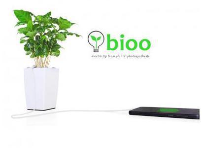 Bild: bioo.tech Pflanzengefäss mit Pflanzenstromkollektor und USB Anschluss