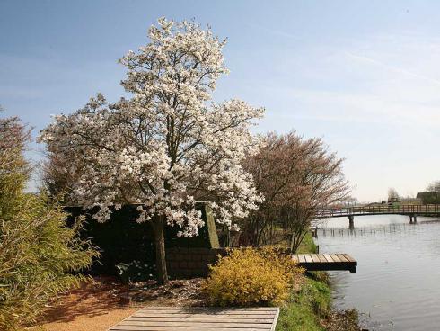 """Foto: Appeltern. - Die """"Gärten von Appeltern"""" liegen in einer idyllischen Gegend in der Nähe von Nimwegen."""