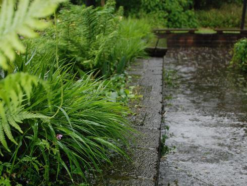 Foto: BGL. - Damit der Garten auch mit häufigen Regentagen gut zurecht kommt, empfiehlt sich das Gespräch mit einem Landschaftsgärtner. Der Profi hat ein umfangreiches Wissen bezüglich Pflanzenauswahl sowie gestalterischer und baulicher Möglichkeiten.