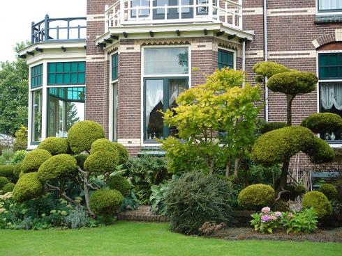 Bild BGL: Vor allem im Vorgarten lassen sich interessant geformten Gehölze eindrucksvoll in Szene setzen.