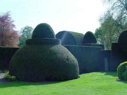 Bild BGL: Die immergrüne Eibe eignet sich bestens für kunstvollen Formschnitt - so können selbst ausgefallene Ideen umgesetzt werden.