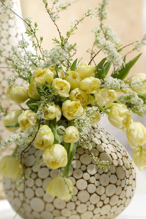 Bild TulpenZeit/ibulb: Als Beiwerk zu Gefüllten Tulpen bieten sich frühblühende Zweige an. Das feine Geäst und die zarten Knospen bilden einen schönen Kontrast zu den grossen Tulpenblüten.