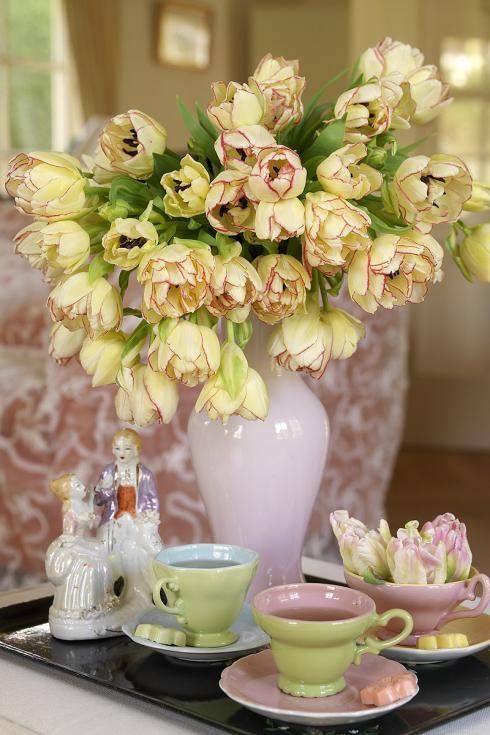 Bild TulpenZeit/ibulb: Tulpen wachsen in der Vase weiter und da die Köpfe der gefüllten Sorten besonders schwer sind, räkeln sich die biegsamen Stängel nach einigen Tagen gern lasziv über den Vasenrand. Zumeist entstehen so sehr malerische Bilder.