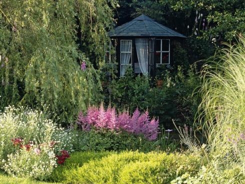 Bild BGL: In schattigen Gartenbereichen kommen die filigranen Blütenrispen einer Prachtspiere unter der Krone eines Laubbaumes und neben den zarten Halmen eines dichten Horstes von Gräsern attraktiv zur Geltung.