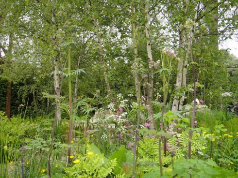 Bild BGL: Das Bewusstsein der Menschen für eine naturnahe Gartengestaltung wächst. Darauf reagieren Landschaftsgärtner mit einer höheren Vielfalt in der Gestaltung und vor allem in der Pflanzenauswahl.