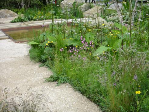 Bild BGL: Wegen seiner ökologischen Vorteile werden häufig zumindest Teile des Grundstücks zu einer Wildblumenwiese umgestaltet. Für Naturgärten gehört sie unbedingt dazu, denn sie erweckt den Garten zum Leben.