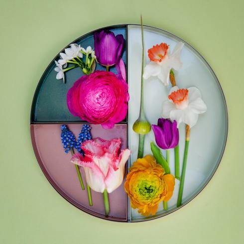 Bild TulpenZeit/ibulb: Im eigenen Zuhause lassen sich die aktuellen Horticulture Stiltrends derzeit natürlich am besten mit den verschiedenen Frühlingsblumen umsetzen.