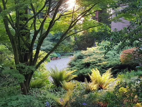 """Bild BGL/Arboretum Härle: Michael Dreisvogt: """"Das Ziel sollte sein, nicht nur Gartenbilder zu schaffen, sondern Atmosphären zu erzeugen und Gartenstimmungen, Düfte, Licht- und Schattenspiele professionell zu gestalten."""""""