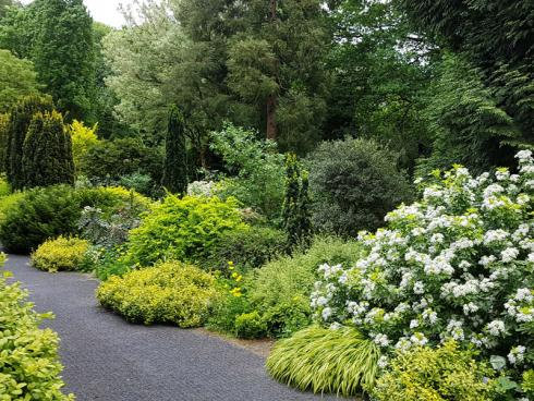 """Bild BGL/Arboretum Härle: Michael Dreisvogt: """"Unser Garten bietet eine umfangreiche Pflanzensammlung, alten Baumbestand und vielfältig gestaltete Beete mit Gehölzen, Stauden und Blumenzwiebeln in einer abwechslungsreichen Topographie."""""""