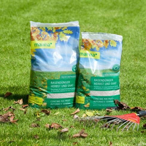 """Bild Hauert Manna: Der """"Manna Rasendünger Herbst und Saat"""" enthält eine Nährstoffkombination, die optimal auf das Ende der Vegetationsperiode abgestimmt ist. Er kann von September bis Anfang November ausgebracht werden."""