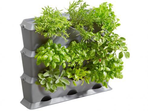 Vertikale Gärten nutzen die spärlichen Flächen auf Balkonen und Terrassen optimal aus