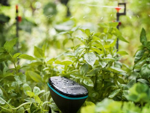 Bild GARDENA: Feuchtigkeitssensoren ermöglichen eine optimale Wasserababe.