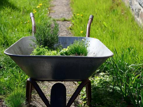 Pixabay: Eine grosse Hilfe bei allen Arbeiten ist eine Schubkarre im Garten.