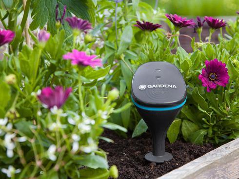 Bild Gardena: Pflanzensensor