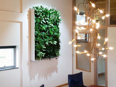 Bild GMH: Lebendiges Gemälde: Wo der Blick in den Garten fehlt, schafft ein Pflanzenbild den Ausgleich. Gut funktionierende Systeme eignen sich auch für Privatwohnungen.