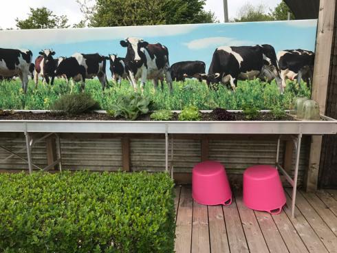 Bild garten.ch: Hochbeete eignen sich bestens für den kleinen Germüse und Kräutergarten zudem sind sie Senioren gerecht