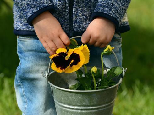 Bild @ congerdesign (CCO-Lizenz) / pixabay.com: Kleine Gefässe und kleine Werkzeuge für Kinder motivieren die Kinder mit ihrem eigenen Werkzeug anzupacken.