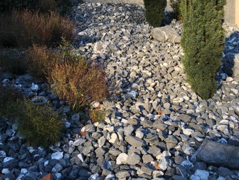 Bild garten.ch: Schotterbeet mit Potenzial. Mit ein paar Gräser und Stauden liesse sich die Dominanz der Schotterflächen etwas brechen.
