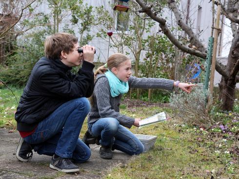 Mitmachen an der Stunde der Gartenvögel macht grossen Spass. Foto: Daniela Pauli/BirdLife Schweiz