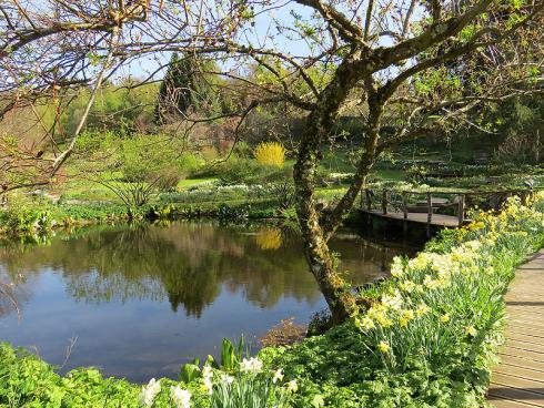 Bild garten.ch: Wasser im Garten als reizvolles Gestaltungselement