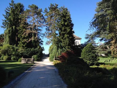 Bild garten.ch: Koniferen im Wenkenpark Riehen