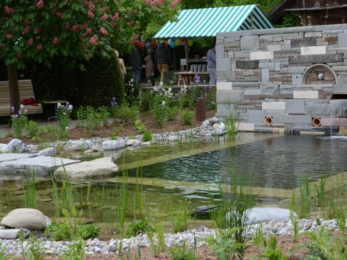 Trittsteine aus Sandstein führen direkt an den Badebereich heran – perfekt, um die Tiere im Teich aus nächster Nähe zu beobachten. © Winkler Richard Naturgärten