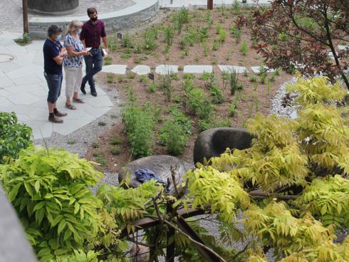 Fortan ist der neu gestaltete Schaugarten von Winkler Richard Naturgärten frei für die Öffentlichkeit zugänglich. © Winkler Richard Naturgärten