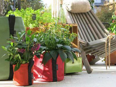 Urban Gardening | garten.ch