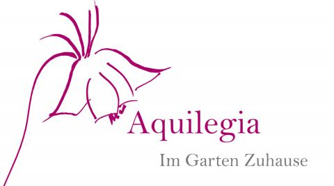 Aquilegia Pflanzencenter