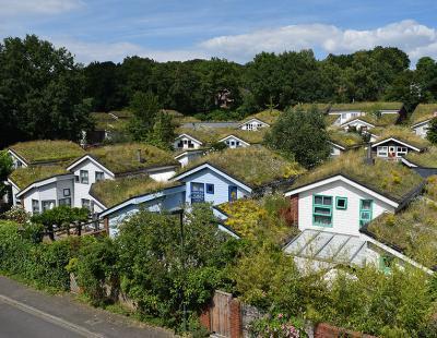 Foto: GPP/BuGG Begrünte Dächer sehen schön aus und leisten einen Beitrag zu einem angenehmen Stadtklima