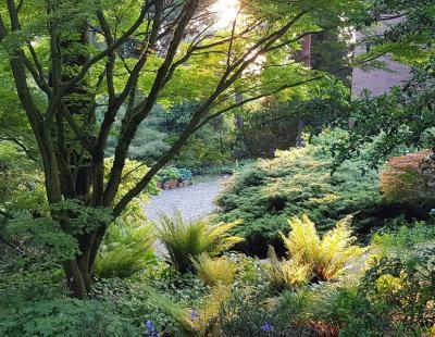 Foto: BGL/Arboretum Härle