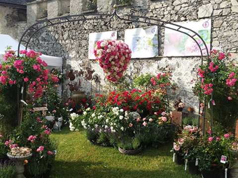Gartenmarkt am Gartenfestival