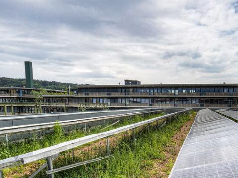Dach des ewz-Unterwerks Oerlikon mit Photovoltaik und Begrünung, Bild ewz