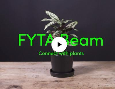 FYTA erhält den Gardena garden award