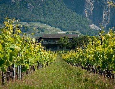 Photo Leytron (Etat du Valais, Didier Carré)