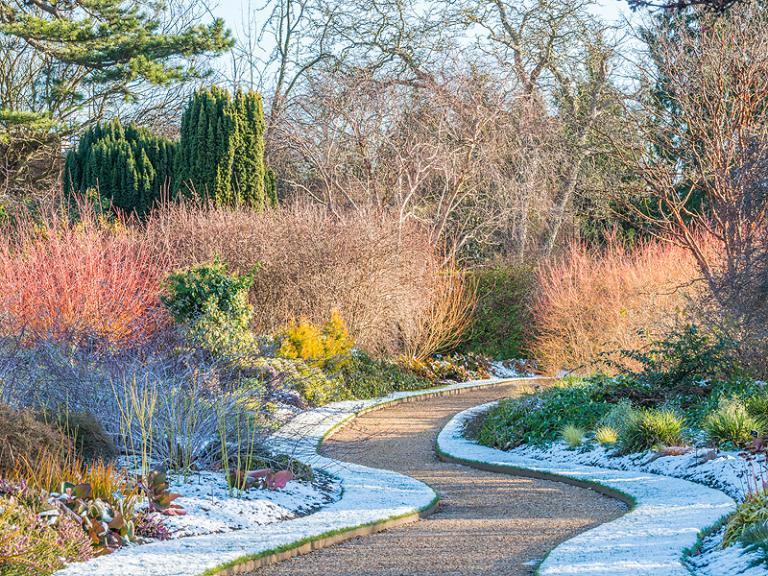 Bild: Cambridge University Botanic Garden - Winter garden