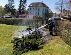 Die Feuerwehr Bischofszell konnte den Brand rasch löschen. (Bild: Kapo TG)