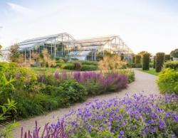 Bild: Europäischer Gartenpreis 2020 RHS